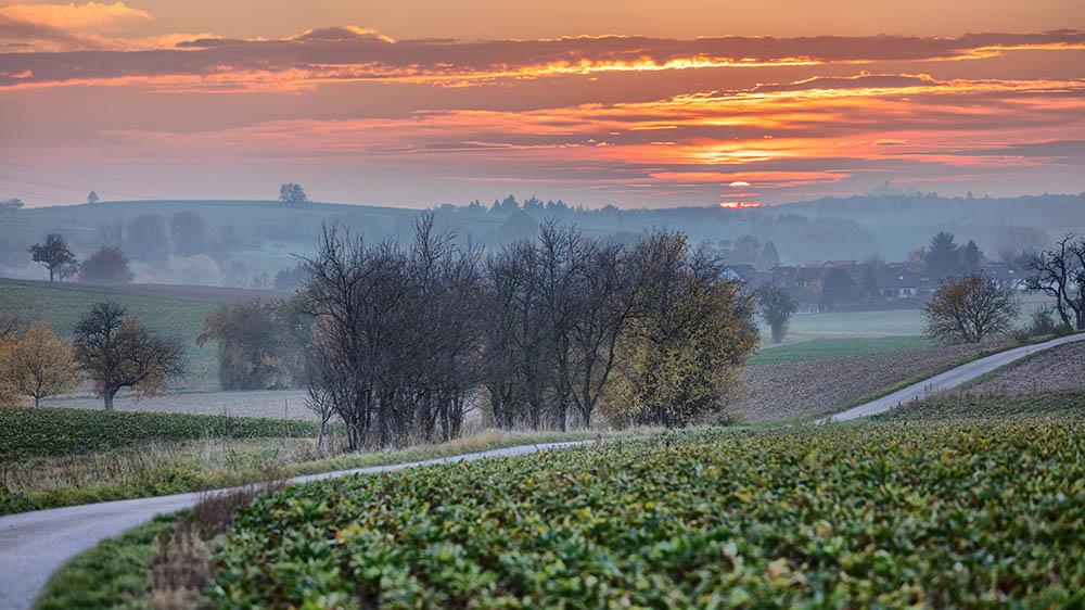 Herbst Teil 3 – Auf den Feldern